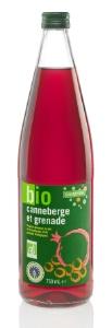 Galvanina: boisson gazeuse bio à base de fruits